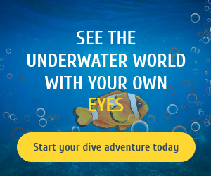 Underwater World Animated Banner Template